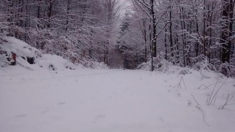 Winterwanderung Grüne Rundwanderweg L
